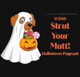 Strut Your Mutt (October 30)
